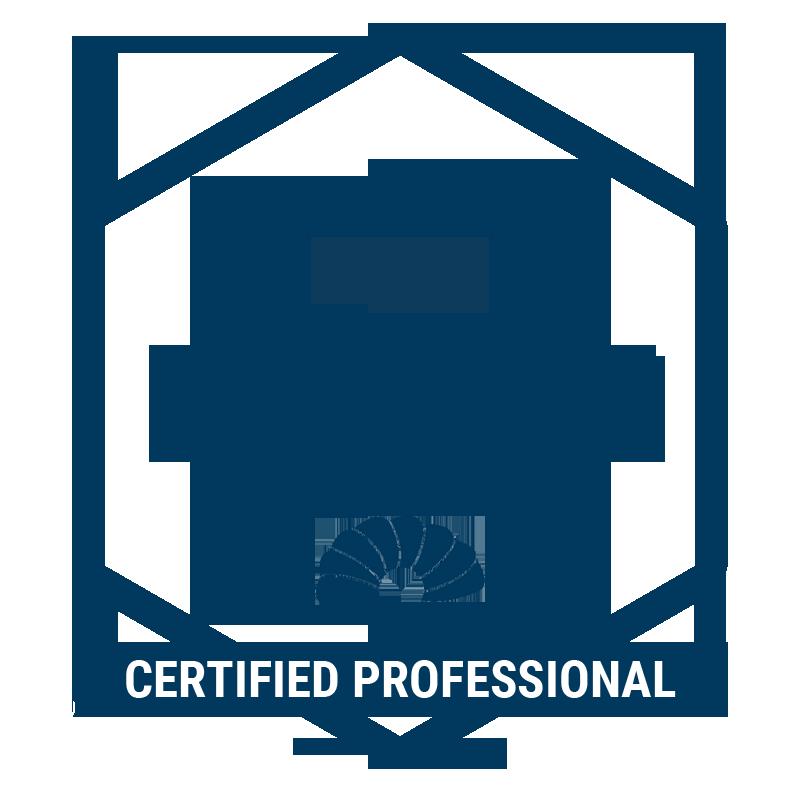 Agile Professional Programming (ICP-PRG)